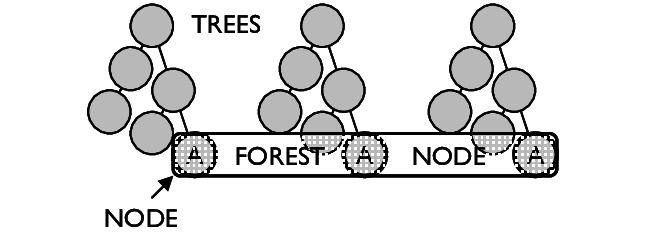 A-Forest-is-composed-of-multiple-trees-Forest-Nodes-span-multiple-trees-to-include-a-set